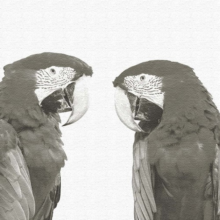 鳥 ファブリックパネル pho-0110 アートパネル アートデリ XLサイズ 100cm×100cm lib-5128915s4 北欧 送料無料 クーポン プレゼント 通販 NP 後払い 新生活 オススメ %off ジェンコ 北欧 モダン インテリア ナチュラル テイスト 雑貨