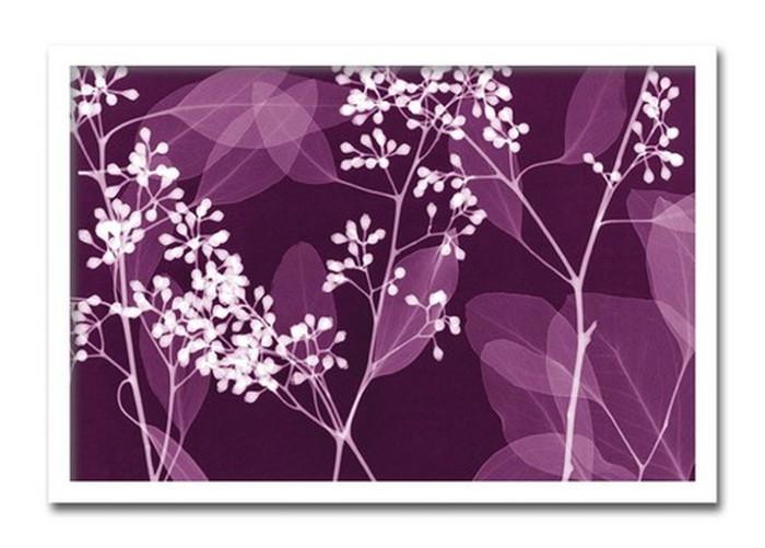 インテリアアート Steven N Meyers Eucalyptus Branches ヒモ付 AS-11363 kar-3097168s1送料無料 北欧 モダン 家具 インテリア ナチュラル テイスト 新生活 オススメ おしゃれ 後払い 雑貨