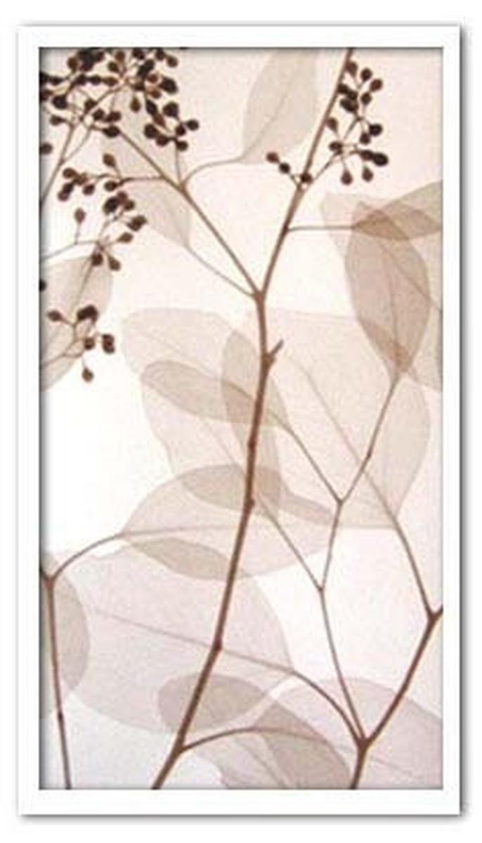 アートフレーム スティーブン・メイヤーズ Steven N.Meyers Eucalyptus II 330x630x30mm ISM-14291 bic-6942487s1送料無料 北欧 モダン 家具 インテリア ナチュラル テイスト 新生活 オススメ おしゃれ 後払い 雑貨