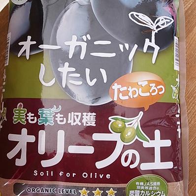 花ごころ オリーブの土 5L 大幅値下げランキング 最安値挑戦 果樹苗の植え替えに最適な用土 オリーブ