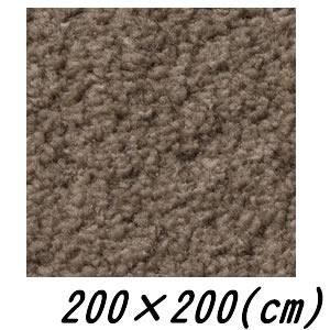 【メーカー直送】 ムーア 国産ラグマット ブラウン 200×200(cm)【smtb-k】【ky】【KK9N0D18P】