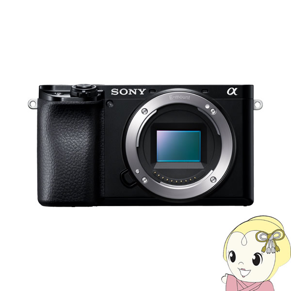 [予約]ソニー ミラーレス 一眼レフ カメラ α6100 ILCE-6100 ボディ [ブラック]【KK9N0D18P】