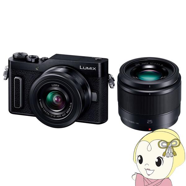 パナソニック ミラーレス一眼レフカメラ LUMIX DC-GF10W-K ダブルレンズキット [ブラック]【KK9N0D18P】