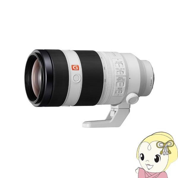 ソニー FE 100-400mm F4.5-5.6 GM OSS SEL100400GM デジタル一眼カメラα [Eマウント]用レンズ【smtb-k】【ky】【KK9N0D18P】