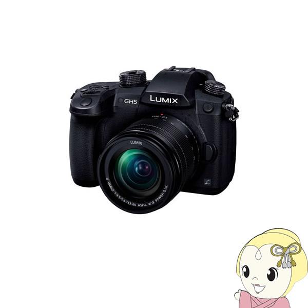 パナソニック 4K/60p動画対応ミラーレス一眼カメラ LUMIX DC-GH5M 標準ズームレンズキット 2033万画素【KK9N0D18P】