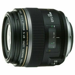 キヤノン 単焦点レンズ EF-S60mm F2.8 マクロ USM 焦点距離:60mm 対応マウント:キヤノンEFマウント系【KK9N0D18P】