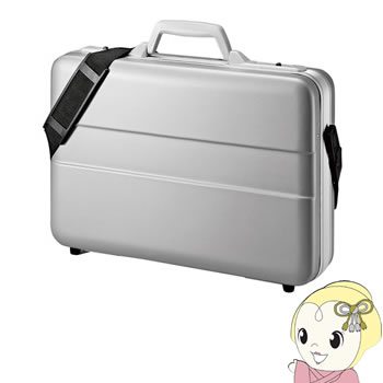 BAG-ABS5N2 サンワサプライ ABSハードPCケース(14インチワイド)【KK9N0D18P】