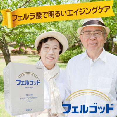 送料無料P10倍【フェルラ酸配合サプリメント】フェルゴッド60包x3箱セット