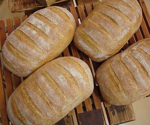 ※スライス無しでお届け 1本 パン 新商品 お気にいる 新型 カンパーニュ ド