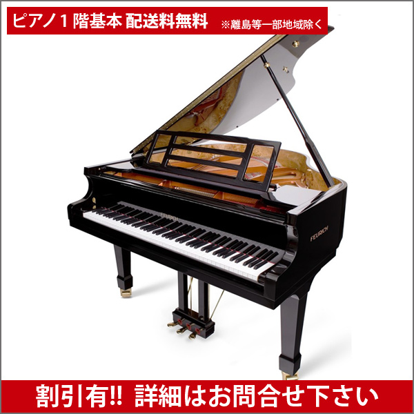 【送料無料 ※離島等一部地域除く】FEURICH(フォイリッヒ)Mod.161 - Professional Black Polish【新品グランドピアノ】【新品ピアノ】【演奏動画付】