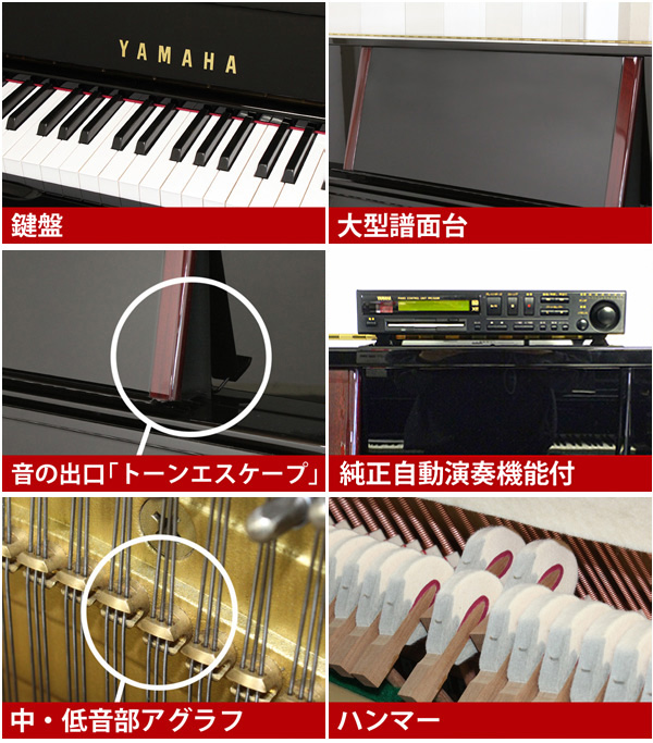 YAMAHA (Yamaha) YU5SXG