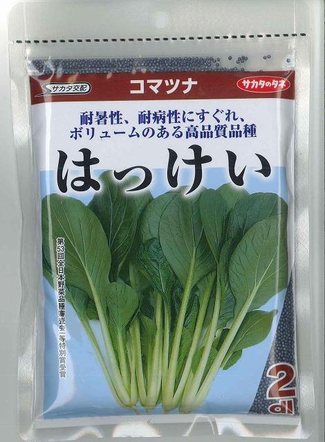 信用 高温期でもがっちりとした株ができる小松菜です 大容量です 小松菜はっけい お得 2dlサカタ交配