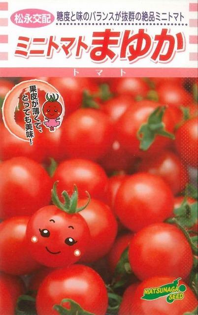 ミニトマトまゆか 1000粒松永種苗