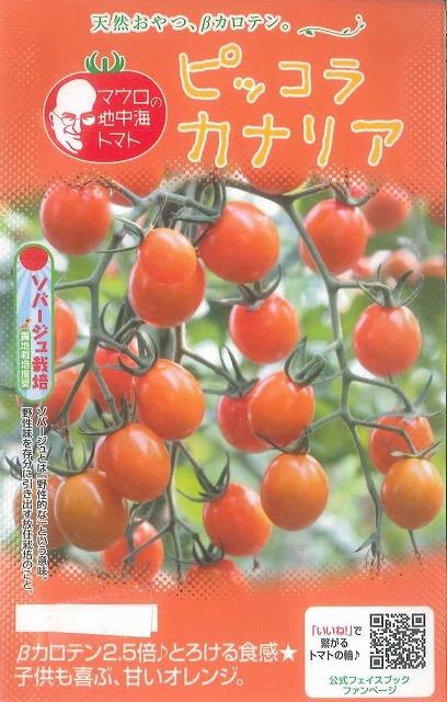送料無料!マウロの地中海トマトピッコラカナリア1000粒