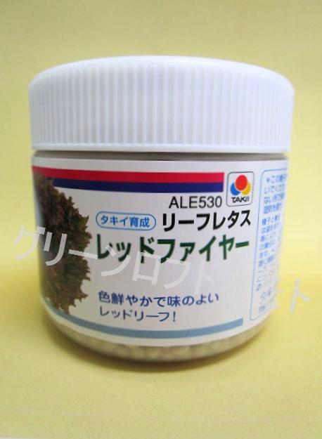 色鮮やかで味のよい 人気の赤リーフレタス リーフレタス タキイ育成 レッドファイヤー ペレット種子5000粒 お見舞い 35%OFF