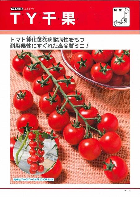 トマトTY千果 ペレット 2L 1000粒タキイ交配