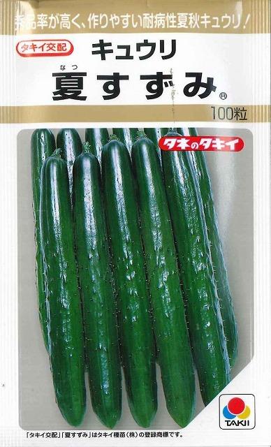 上等 病気に強く作りやすいで家庭菜園に大人気品種 海外並行輸入正規品 きゅうり夏すずみ100粒 タキイ交配