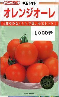 送料無料!中玉トマトオレンジオーレ1000粒 カネコ交配