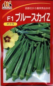 野菜種 オクラ ブルースカイZ 1L  みかど協和(株)