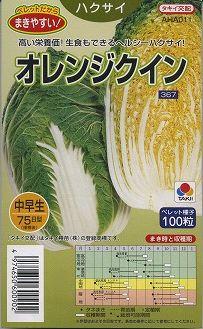 白菜種 オレンジクインペレット 5000粒タキイ交配