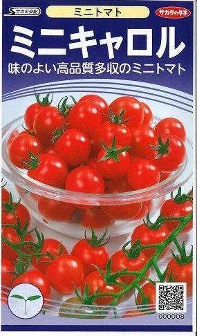ミニトマト ミニキャロル 5ml サカタのタネ