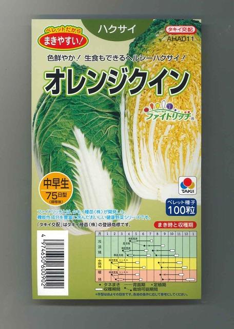 高い栄養価 生食もできるヘルシー白菜 買い物 期間限定今なら送料無料 白菜種 100粒タキイ交配 オレンジクイン