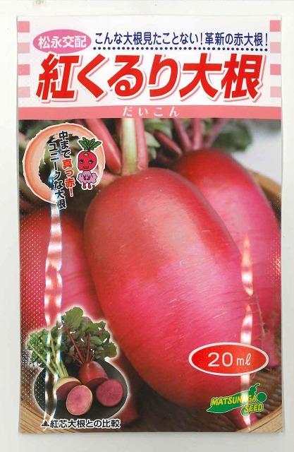 こんな大根 見たことない 革新の赤大根 おすすめ ◆高品質 20ml松永交配 大根紅くるり