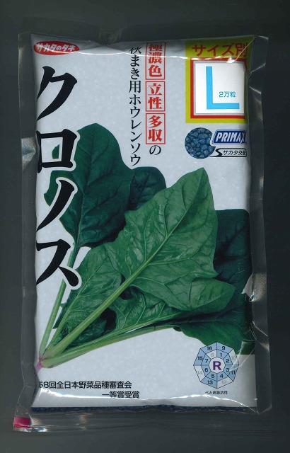 葉色が特に濃く 9~3月まで蒔ける ほうれんそうクロノス サカタ交配 上質 Lサイズ SALE開催中 2万粒