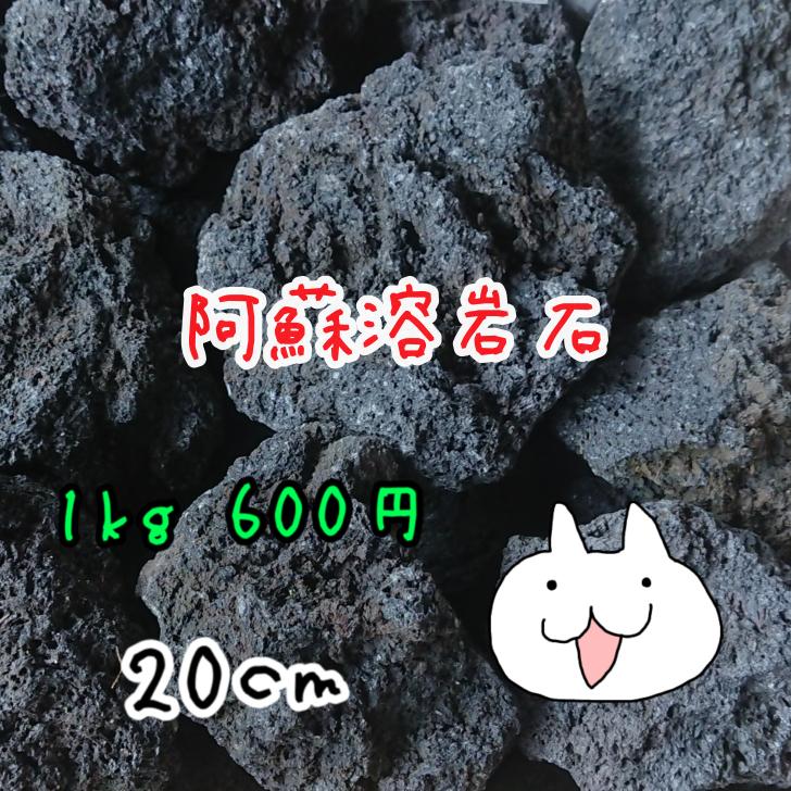 阿蘇の大自然が生んだ漆黒の宝石 よかよか 阿蘇の溶岩石 20センチ 驚きの価格が実現 20キロまで送料1000円 トラスト 1kgグラム600円 23キロ以上お買い上げの場合は送料無料