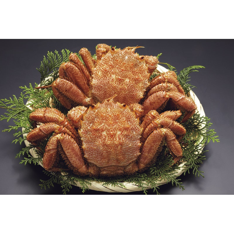 【送料無料】北海道産ボイル毛がに大2尾1kg