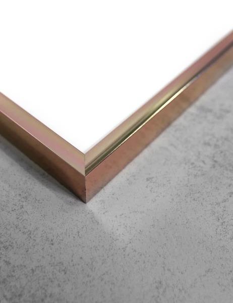 北欧から入荷したシンプルなアルミフレーム 50x70cm ROSE ALMINIUM ファクトリーアウトレット ポスターフレーム アルミ額縁 売り込み FRAME ローズアルミニウムフレーム