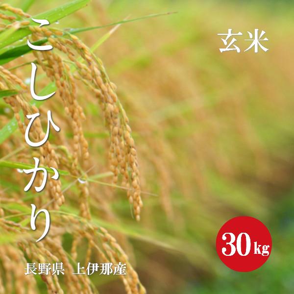 長野県産 こしひかり 上伊那産 1等米 30年産 玄米 30kg 【送料無料】