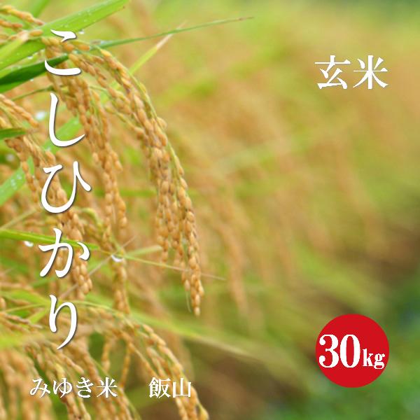 長野県産 こしひかり 幻の米 飯山みゆき米 特A1等米 30年産 玄米 30kg 【送料無料】