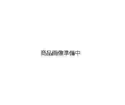 ADVANTAGE/アドバンテージ マスターシリンダー ブラックボディー シルバーレバー 17φ