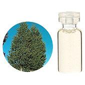 日本アロマ環境協会 表示基準適合認定精油 SA【GET! 生活の木 エッセンシャルオイル シダーウッド・バージニア 3mL】 エッセンシャルオイル アロマオイル 精油 アロマ