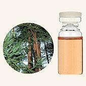 日本アロマ環境協会 表示基準適合認定精油 SA【GET! 生活の木 エッセンシャルオイル 杉(木部) 3mL】 エッセンシャルオイル アロマオイル 精油 アロマ