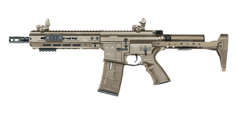 ICS CXP-HOG QRS TAN AEG フロント配線 (EBB/JP Ver.)