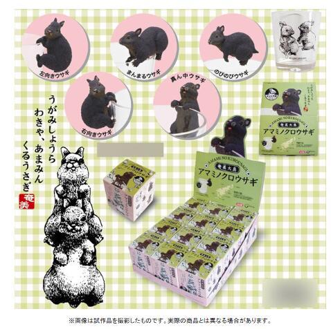 奄美大島 アマミノクロウサギ 12個入りBOX 002780 【ヤマア】【4991567002780】