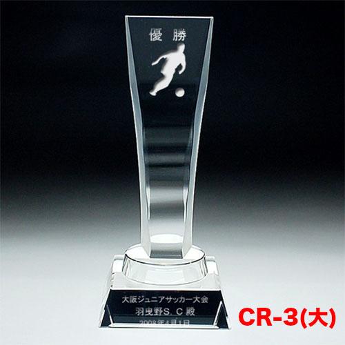 クリスタルトロフィー CR-03(大) 流麗なカット形状 擦りガラス加工 ゴルフ スポーツ 優勝 記念品《文字入れ無料》