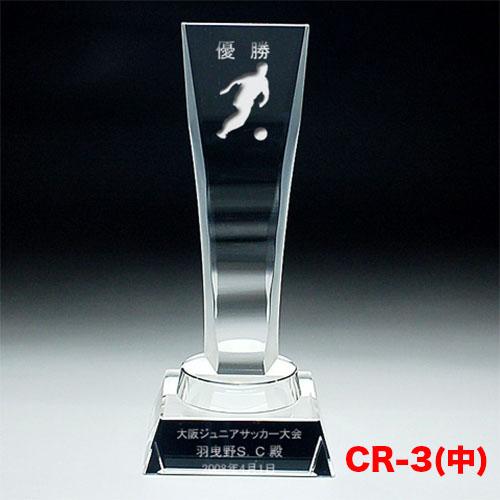 クリスタルトロフィー CR-03(中) 流麗なカット形状 擦りガラス加工 ゴルフ スポーツ 優勝 記念品《文字入れ無料》