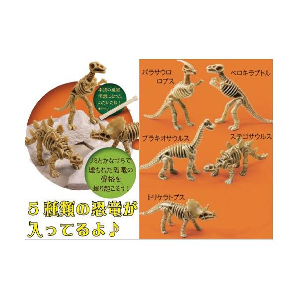 恐竜発掘キット作り30名様用【手作りキット】