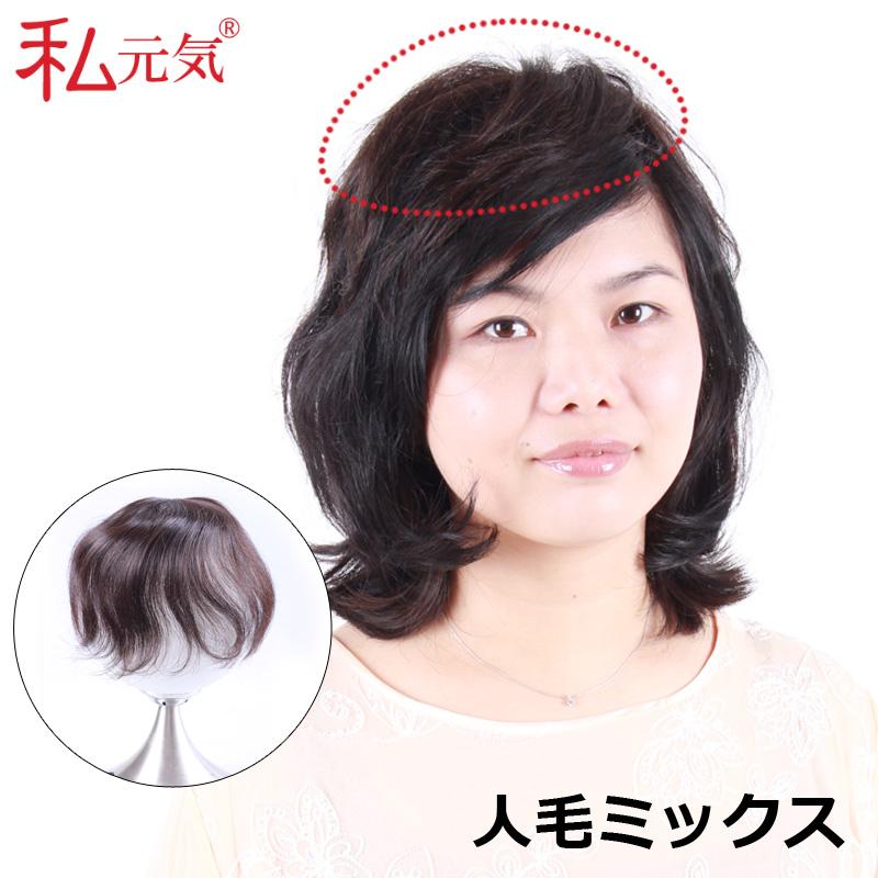 ウィッグ ウイッグ 部分  総手植え人毛ミックス 【送料無料】人毛30%、高品質耐熱繊維70% 私元気 部分   かつら 増毛部分かつら  白髪隠し TR013-2