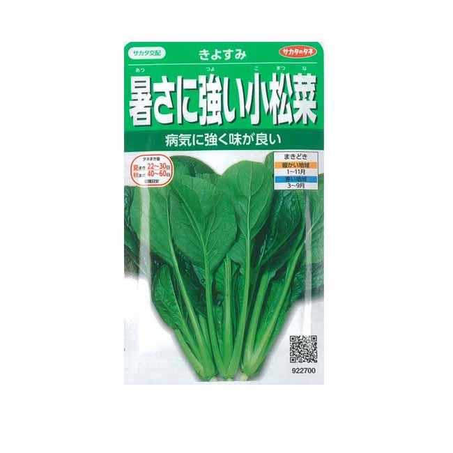 種子 マーケティング 小松菜 数量限定アウトレット最安価格 家庭菜園 コマツナ 2dl 種 きよすみ サカタのタネ