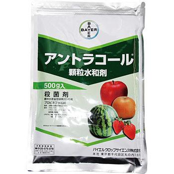 殺菌剤 アントラコール顆粒水和剤 500g×20袋セット 【ケース販売】