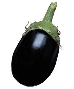 ストア 種子 なす 家庭菜園 タネのタキイ 野菜 種 ナス 2000粒 タキイ種苗 くろわし 新作通販