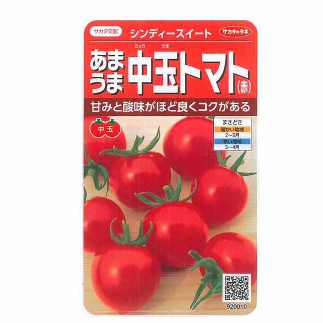 野菜種 中玉トマト シンディースイート 1000粒 サカタのタネ