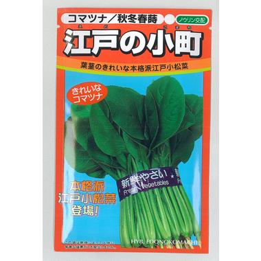 野菜 種 種子 こまつな コマツナ 江戸の小町小松菜 1L ノウリン交配