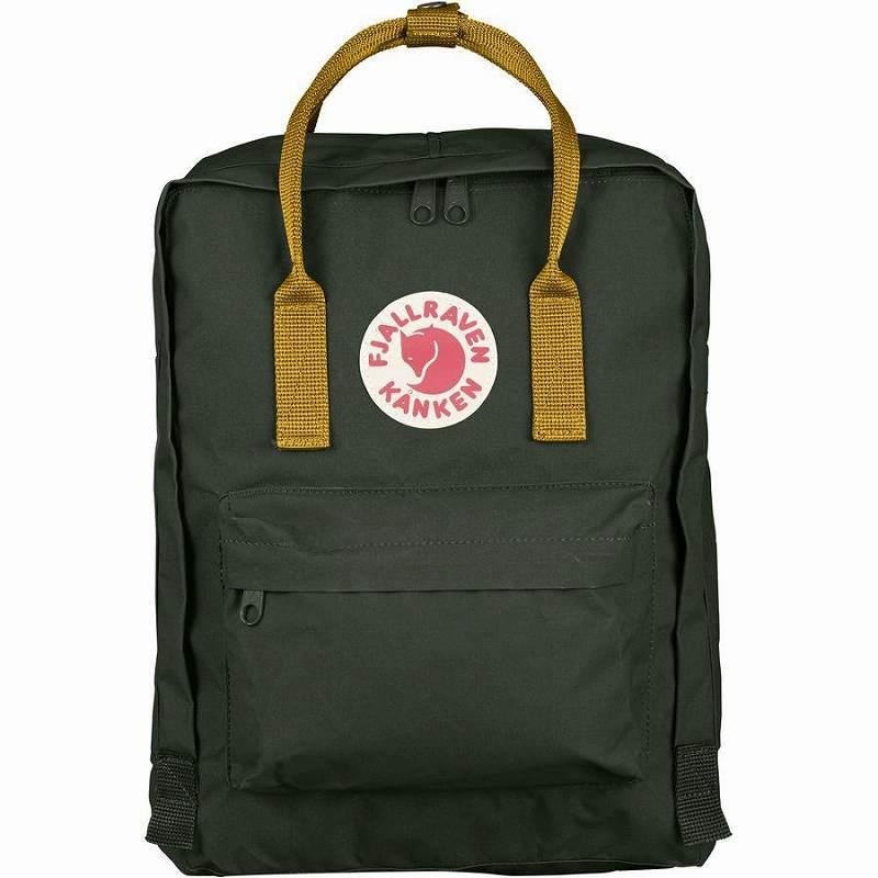 【エントリーでポイント5倍】(取寄) フェールラーベン ユニセックス カンケン 16L バックパック Fjallraven Men's Kanken 16L Backpack Deep Forest/Acorn