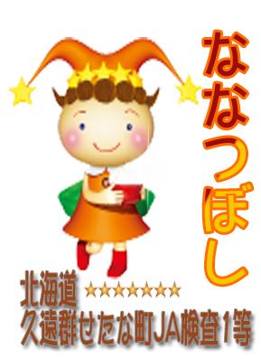 【 北海道産 】令和元年産 特A地区 安心のJA検査 ななつぼし 検査1等 玄米25kg