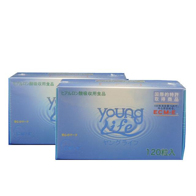 ヤングライフ 120粒 2個セット  【送料無料】   食べるヒアルロン酸配合のヤングライフ [ヒアルロン酸 サプリ] ECM・E配合 アダプトゲン製薬 低分子化